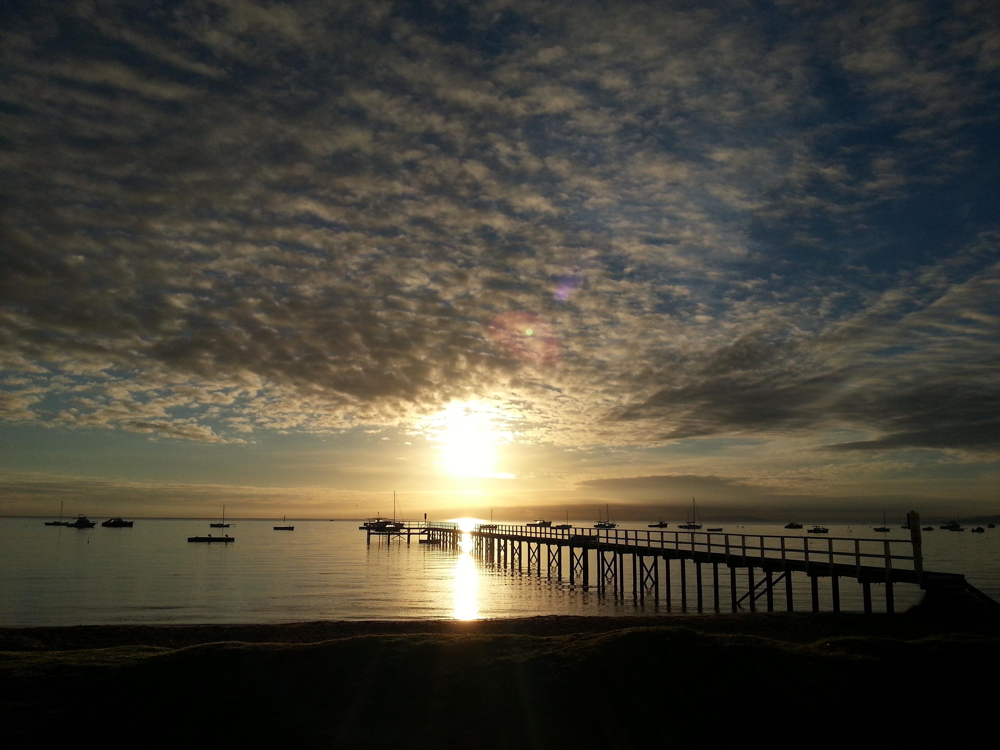 Jan 11, 2017 Blog Post Samantha Wood